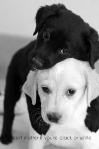 black-white-love-pretty-quotes-quote-Favim.com-599971